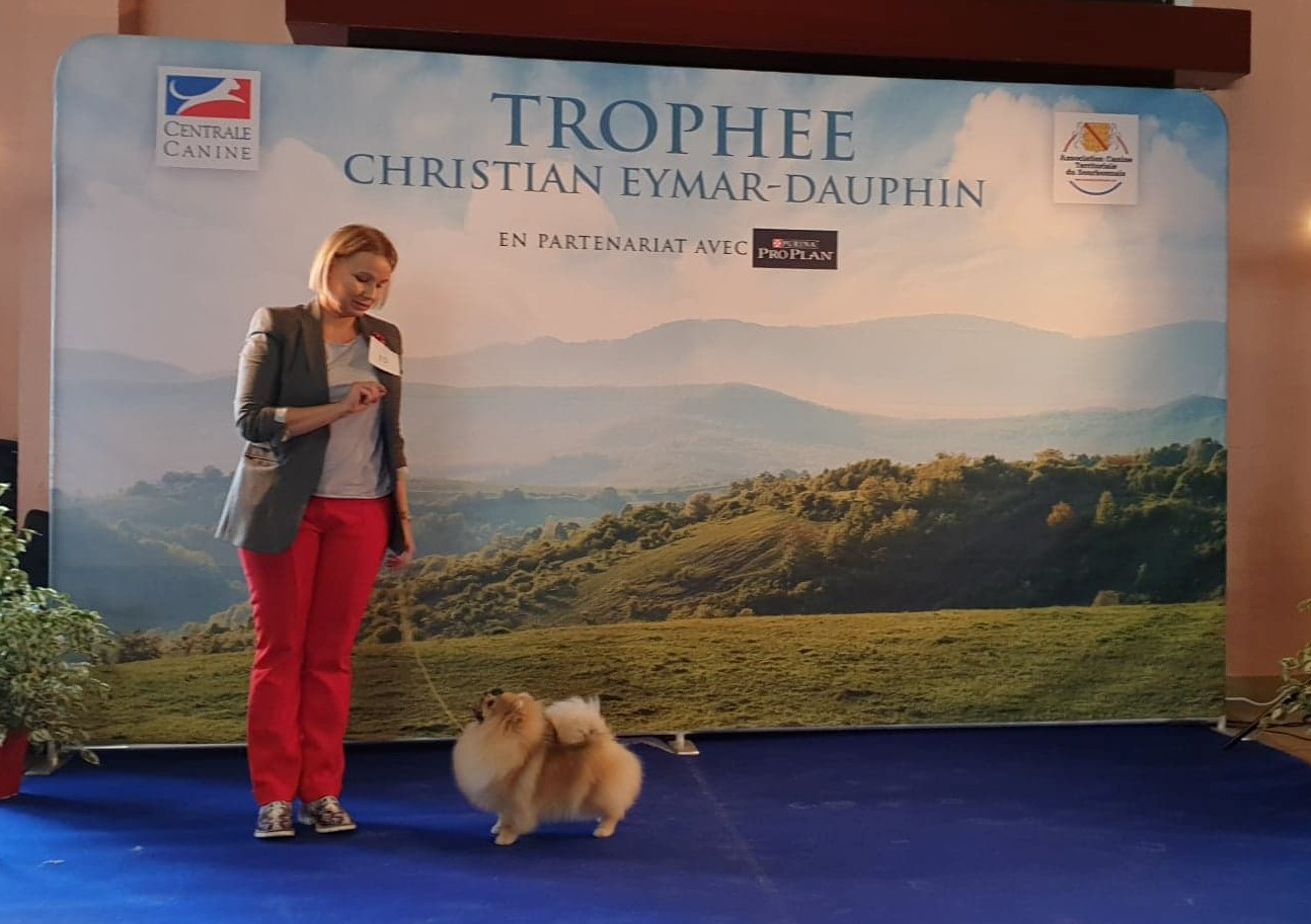 LALY OF LOVELY TIM Trophée Eymar Dauphin 2020